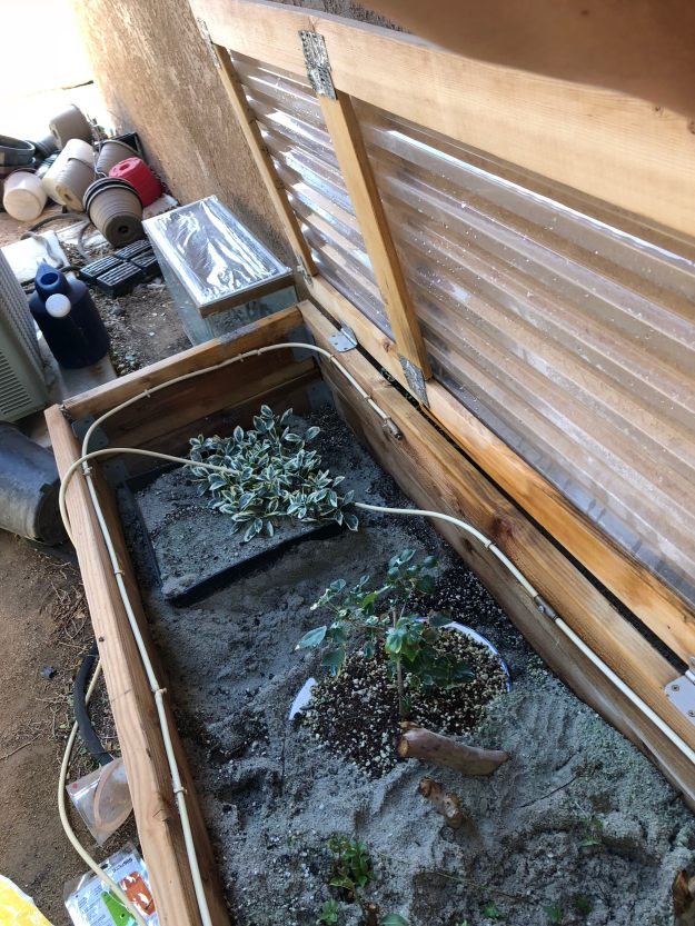 Plant Propagation Box